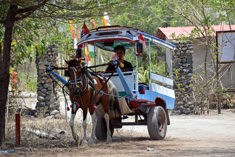 Indonesia, Travel, Gili Islands, Sand Road, Coach