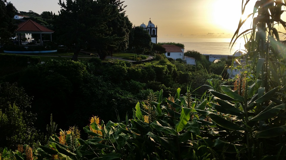 Azores, Flores, Ginger Lily, Sunset, Atlantic, Ocean