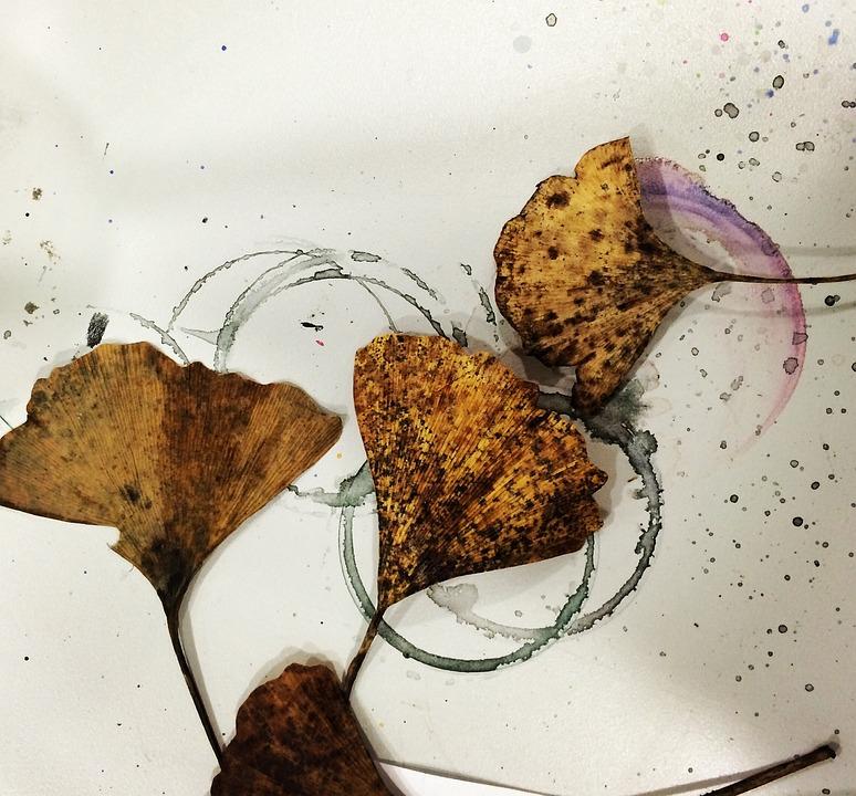Farbkleckse, Dty Leaves, Goethe, Gingko