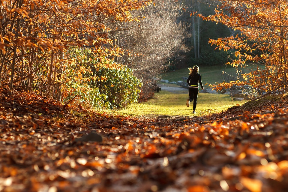Girl, Running, Forest, Autumn, Leaves