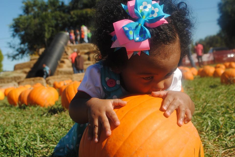 Pumpkin Patch, Girl, Baby, Pumpkin, Autumn, Halloween