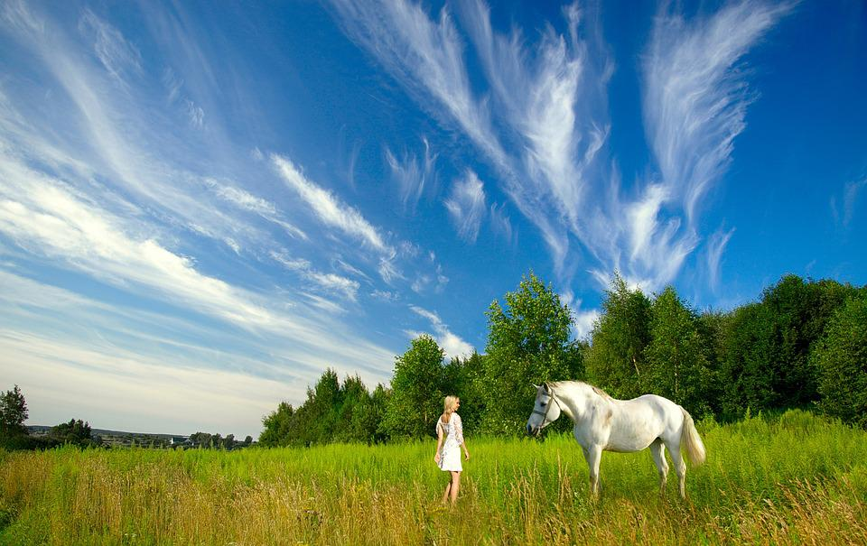 Horse, Girl, Meadow, Nature, Green, Blue Sky
