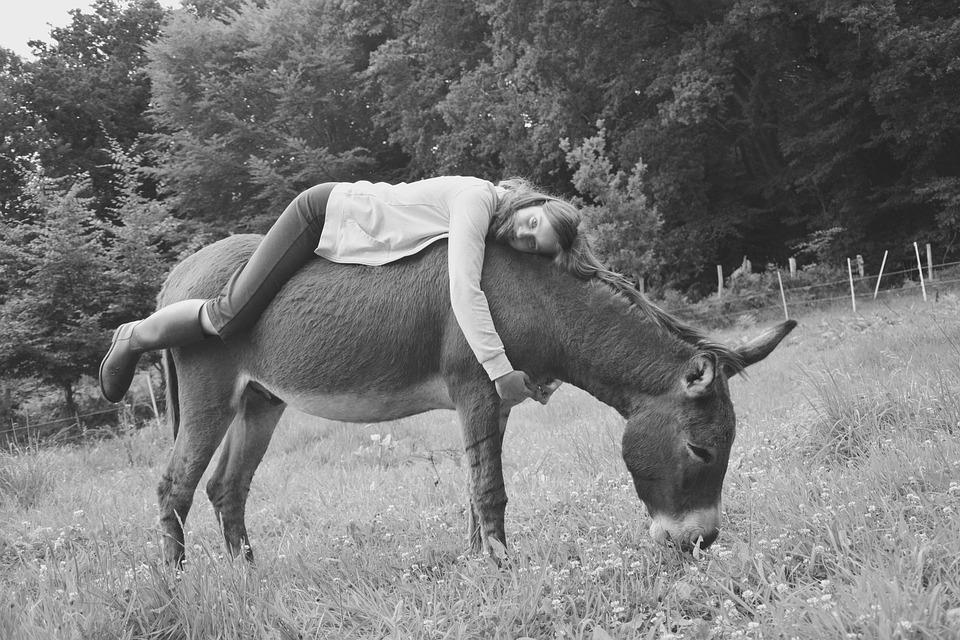 Donkey Girl Young Woman Photo Black White Back Ass