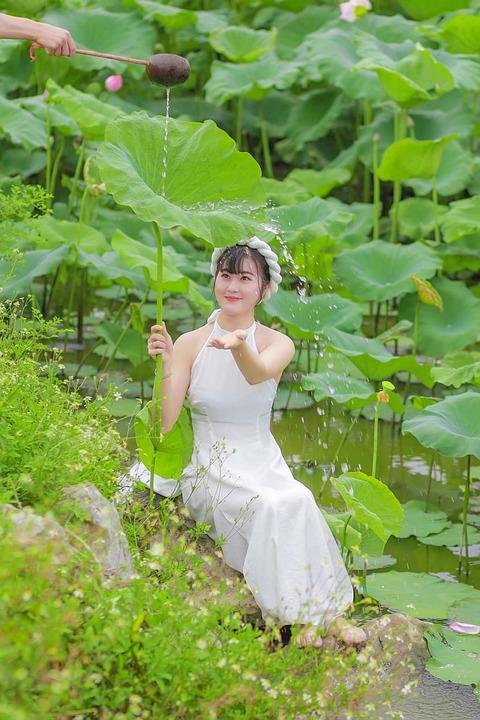 Girl, Dress, Lotus, Vietnamese, Lotus Leaves, Fashion