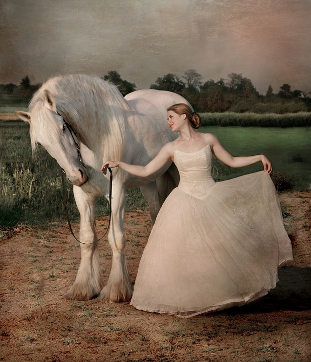 Horse, Shire, Horses, Equine, Woman, Girl, Friendship