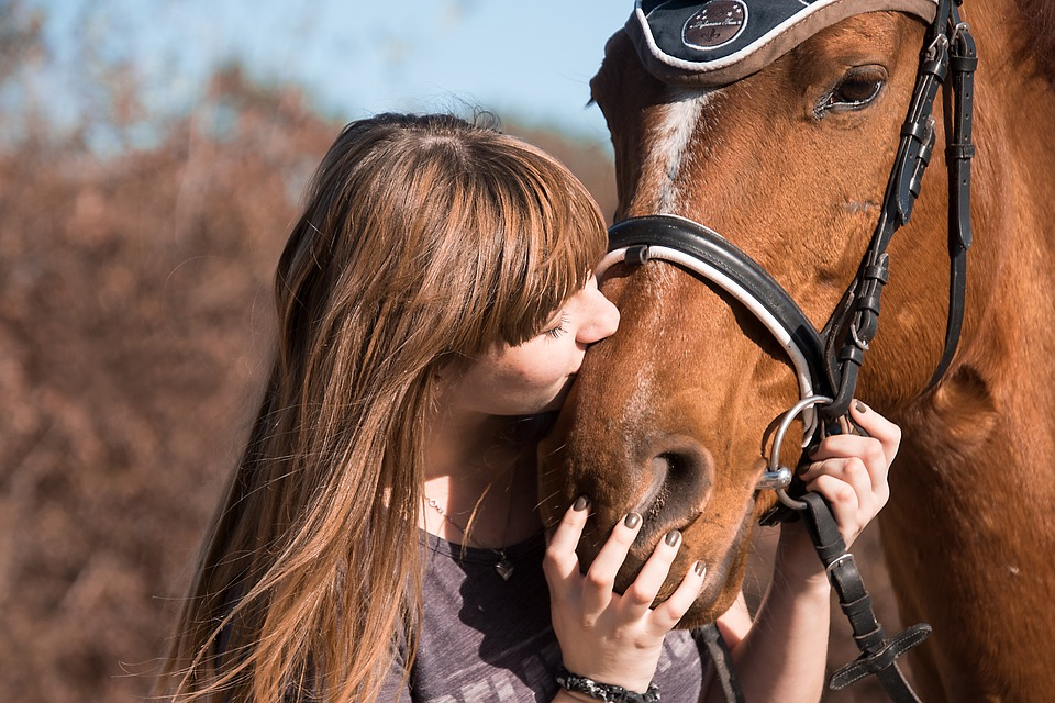Horse, Animal, Friendship, Kiss, Human, Ride, Girl