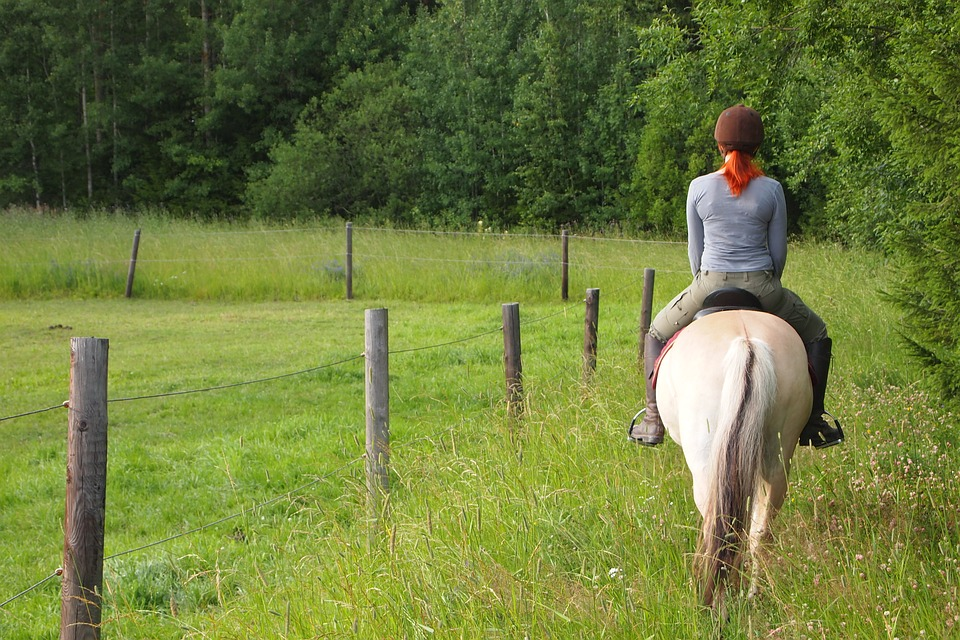 Horseback Riding, Horse, Ride, Girl, Countryside