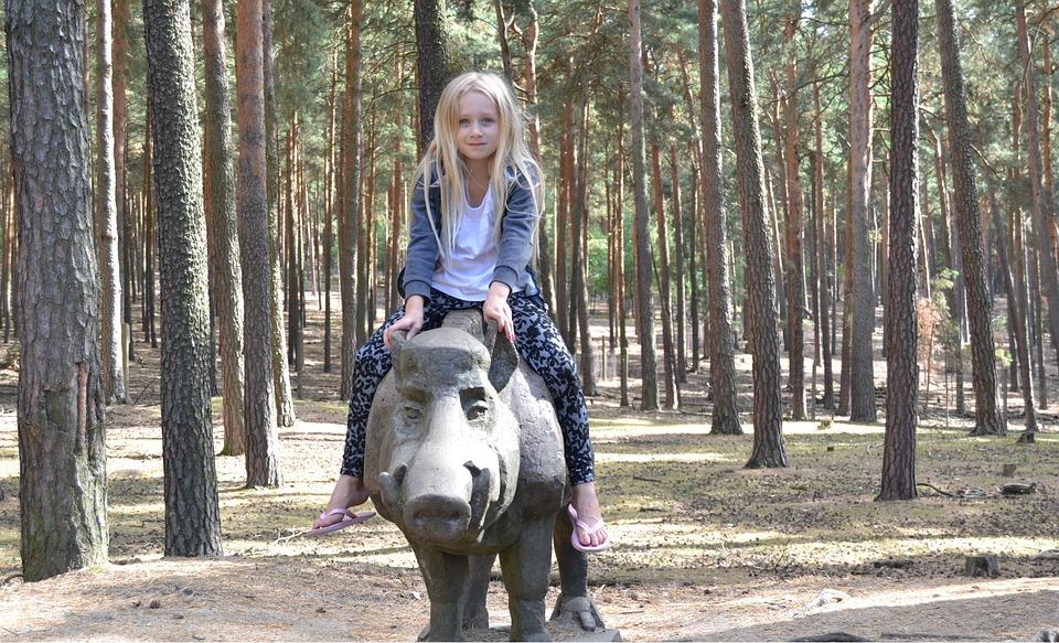 Nature, Wild Boar, Ride, Girl