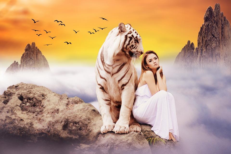 Beautiful, Nature, Sunset, Young, Girl, Tiger