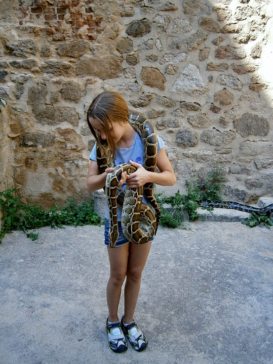 Girl, Snake, Girl With Snake, Serpentine, The Brave