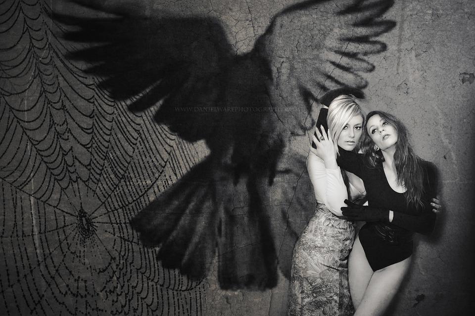 Women, Female, Halloween, Girls, Cobweb, Bird, Crow