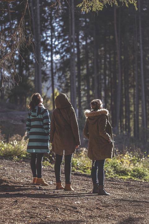 Forest, Trip, Women, Girls, Sun, Sunset, Fall, Nature