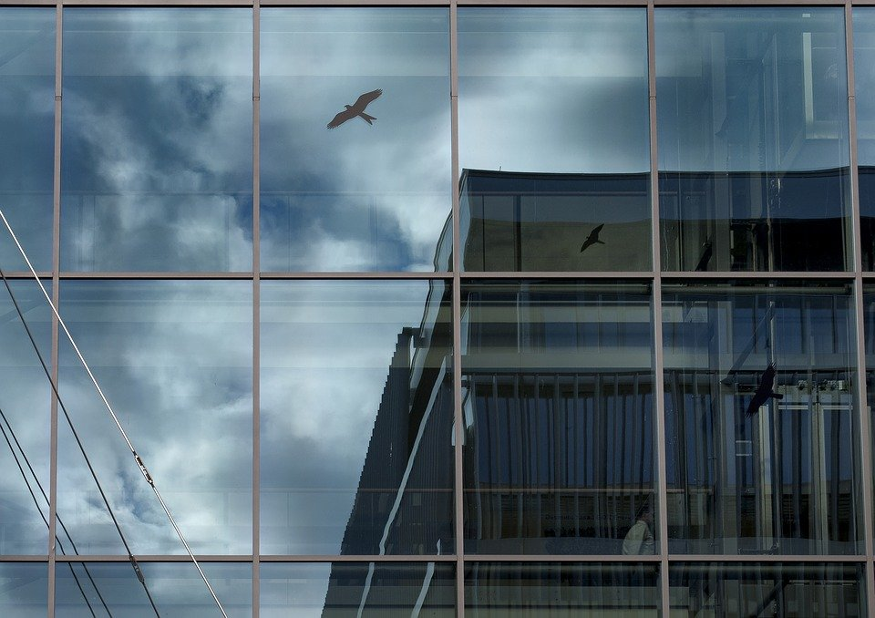 Architecture, Reflection, Contrast, Glass, Gray