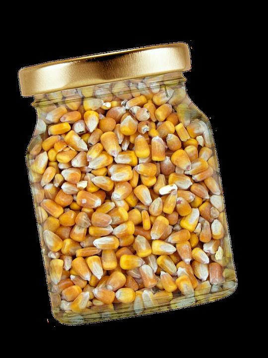 Corn, Glass, Lid, Corn Kernels, Isolated, Exemption