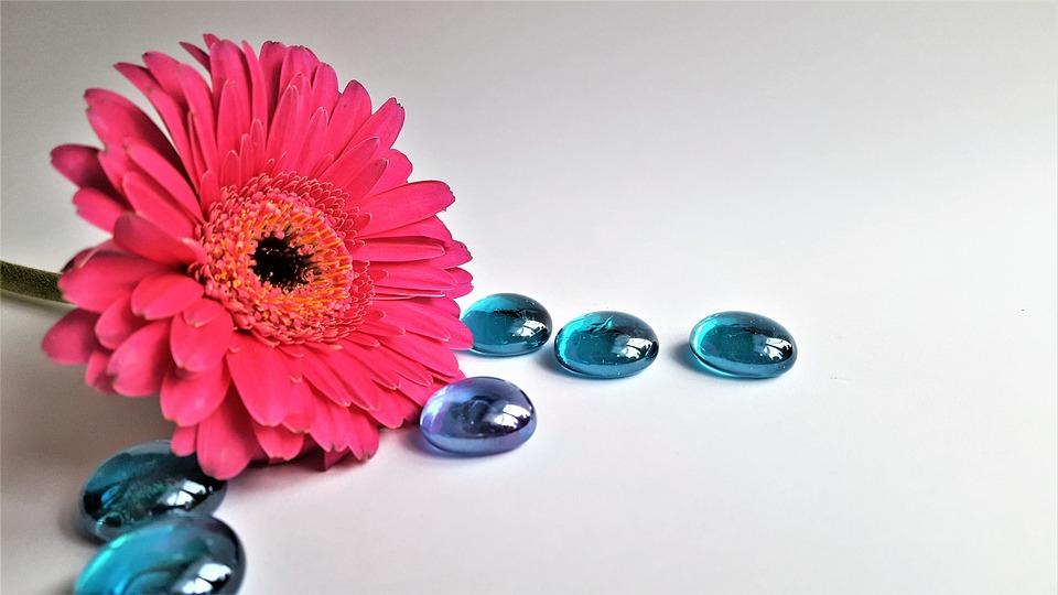 Flower, Pink, Kabošon, Glass, Blue