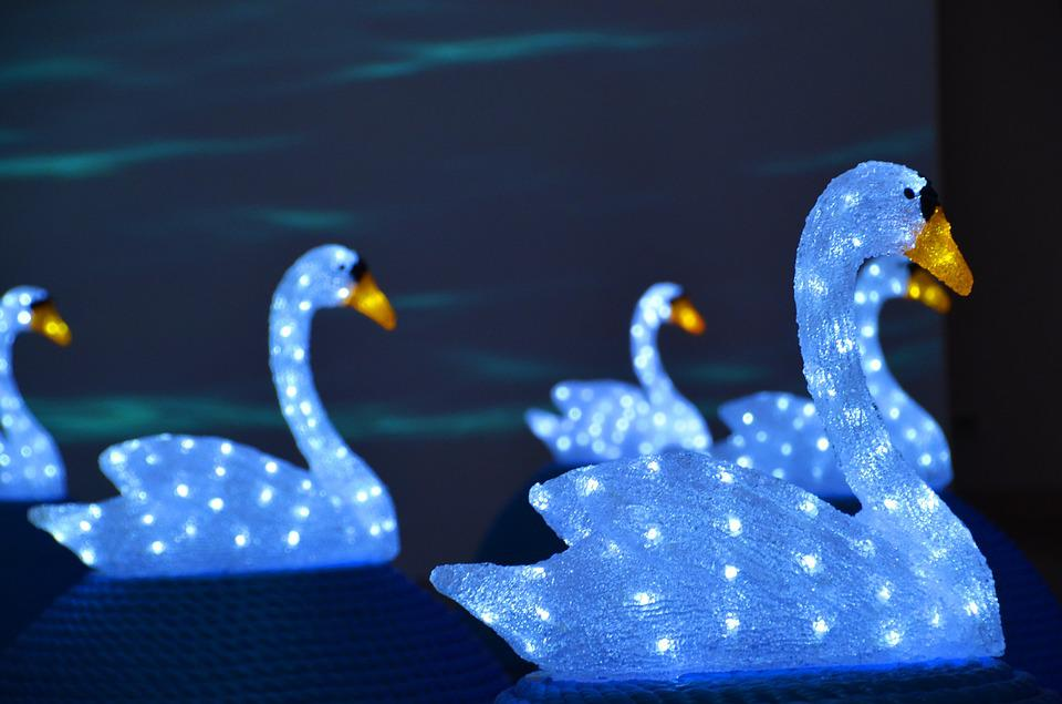 Art, Art Installation, Installation, Swans, Swan, Glass