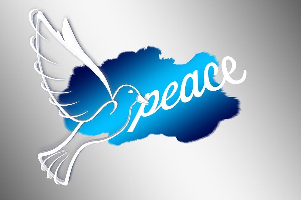 Global, Dove, Harmony, Peace Dove, World Peace, Fly