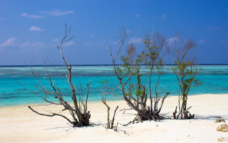 Global Warming, Beach, Sea, Water, Nature, Sand