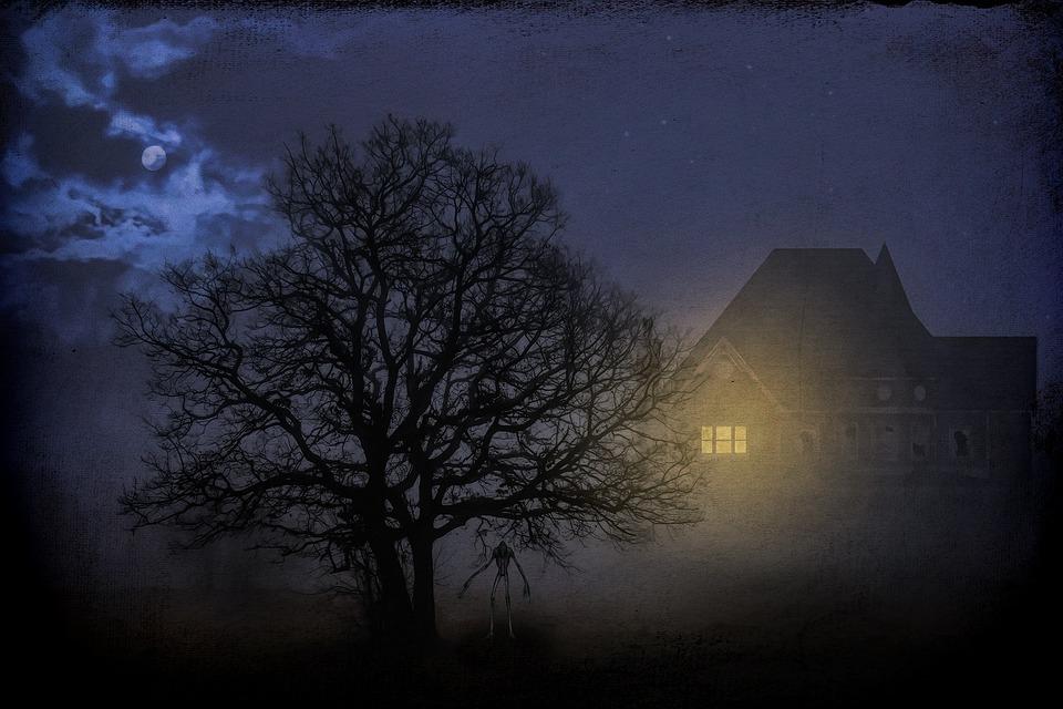 Gloomy, Dark, Mystical, Night, Tree, Moon, Full Moon