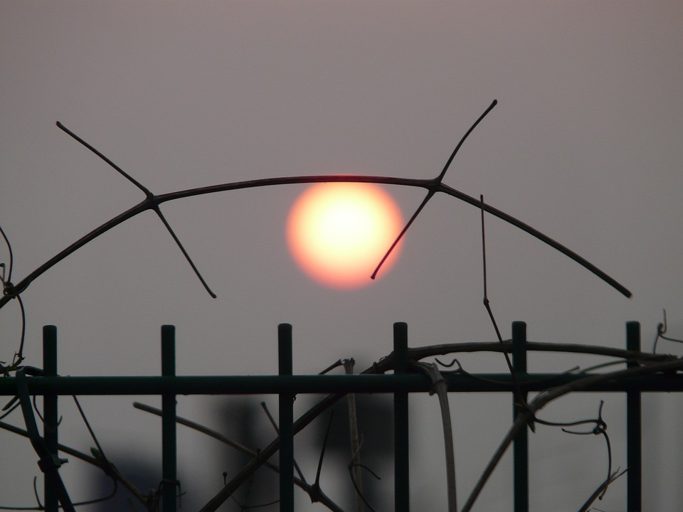 Sun, Pale, Gloomy, Mood, End Of The World, Fence