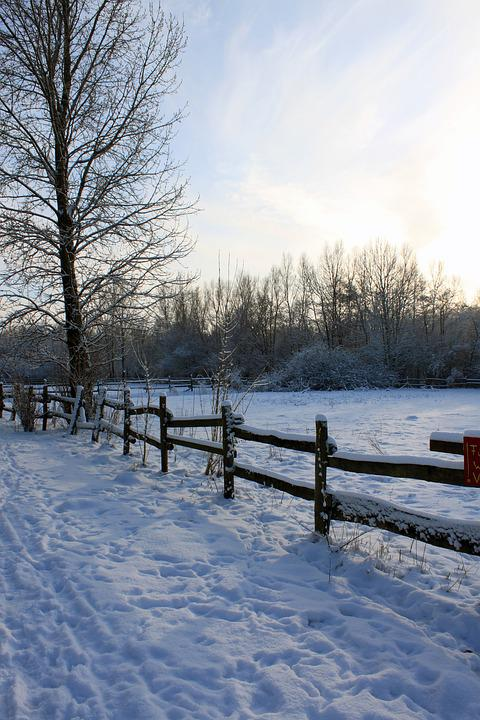 Winter, Landscape, Snow, Wintry, Fence, Go For A Walk