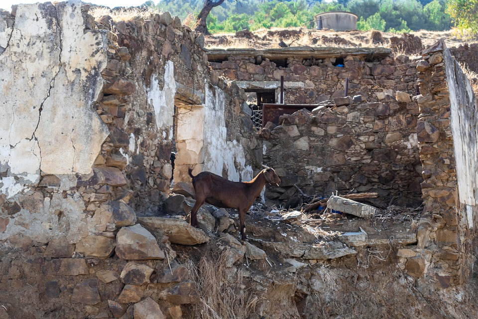 Alewga, Village, Cyprus, Goat, The Stones, Destroyed