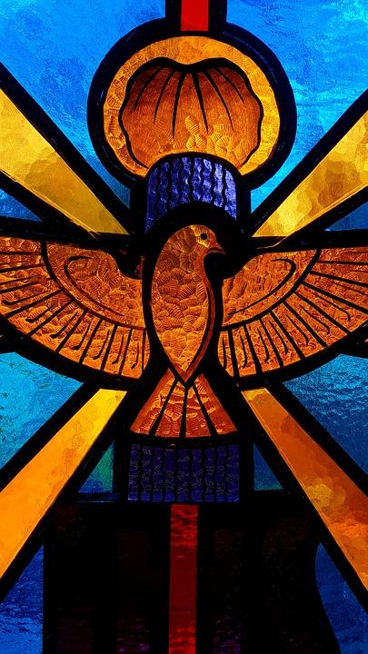 Bird, Fly, Animal, Church, God, Love