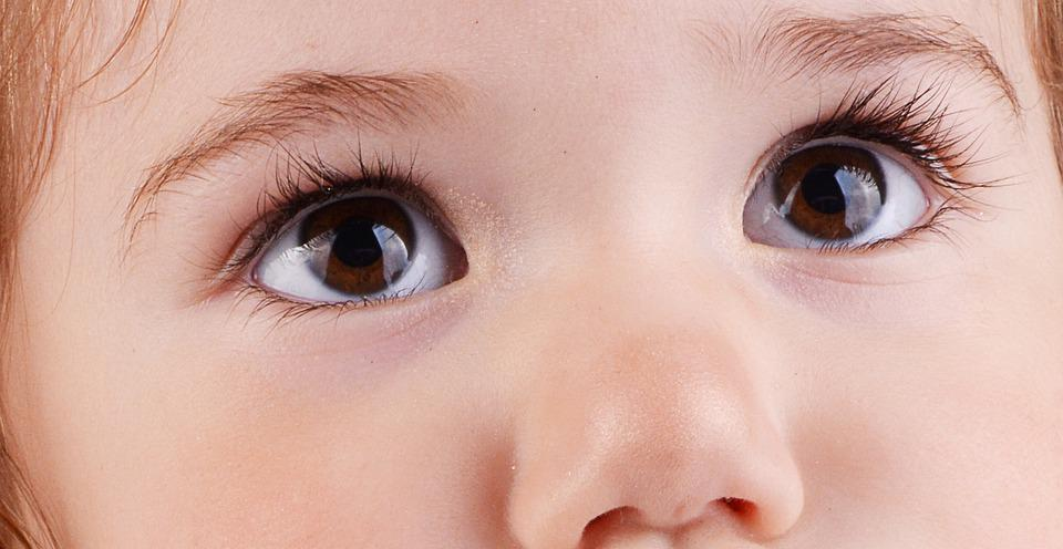 Eyes, Nose, Cilia, Skin, A Small Human, God's Creation