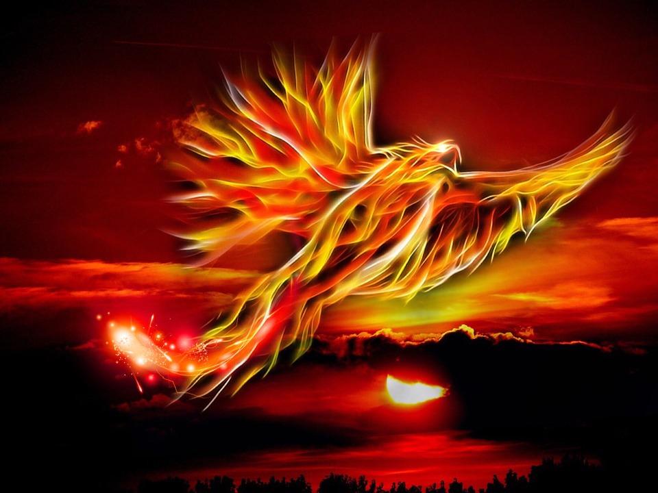 Phoenix, Bird, Fire, Sun, Bright Red, Gold