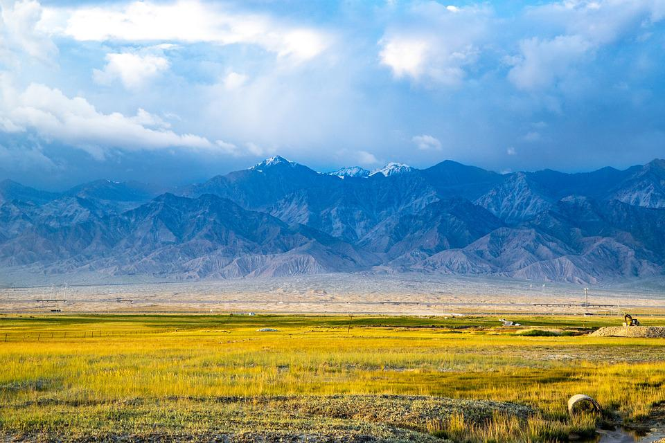 Landscape, Gold, Agriculture, Nature, Green