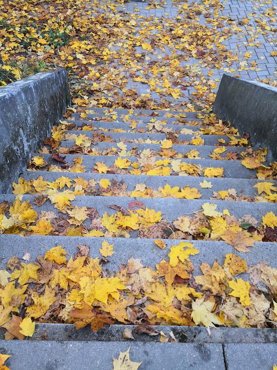 Gold, Stairs, Leaves, Autumn