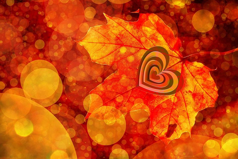 Bokeh, Leaf, Heart, Autumn, Leaves, Golden Autumn, Love