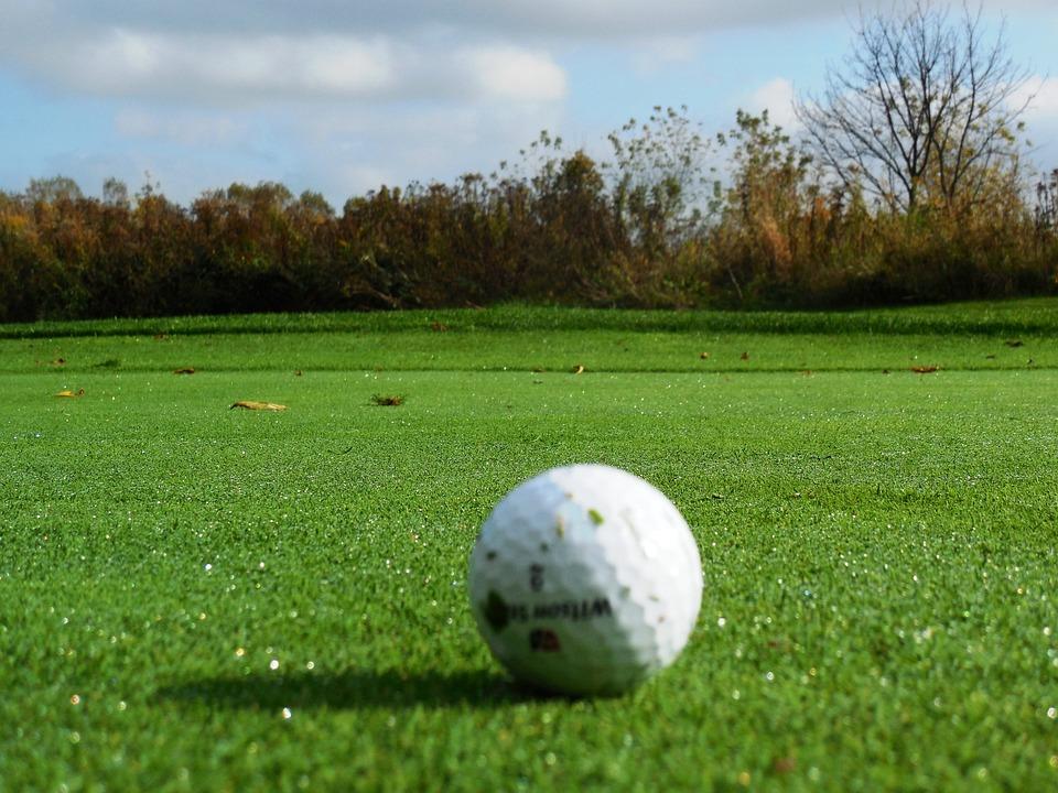 Golf, Green, Golf Turf, Golf Field, Grass