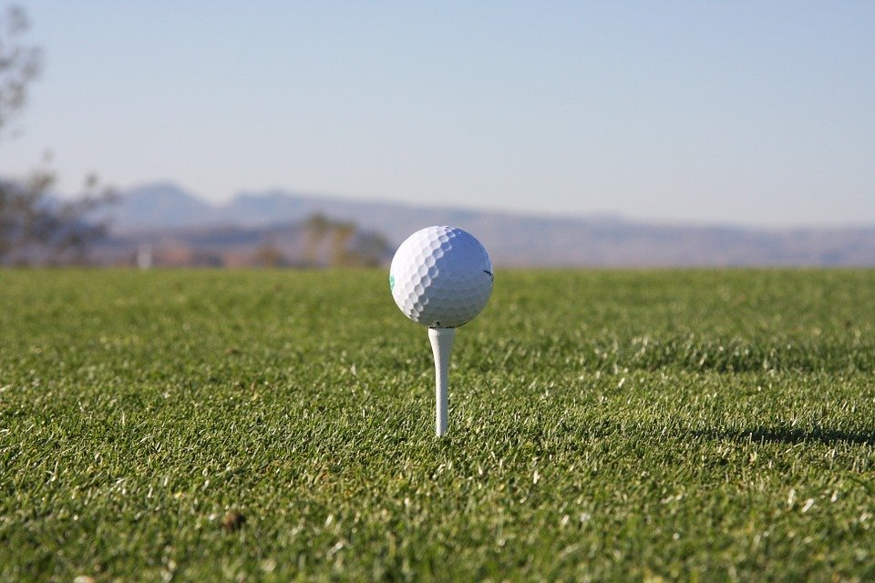 Golf, Tee, Golfing, Golfer