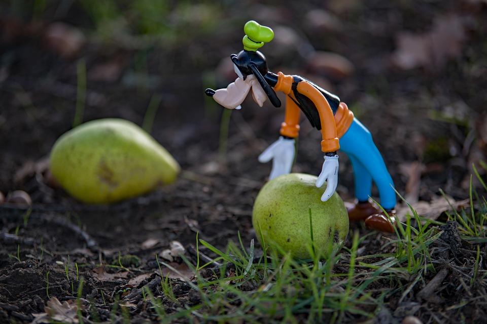 Disney, Autumn, Goofy, Still Life, Season, Fruit