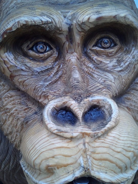 Gorilla, Wood Carving, Chainsaw Art