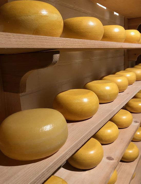 Cheese, Gouda, Food, Eat, Milk Product, Nutrition