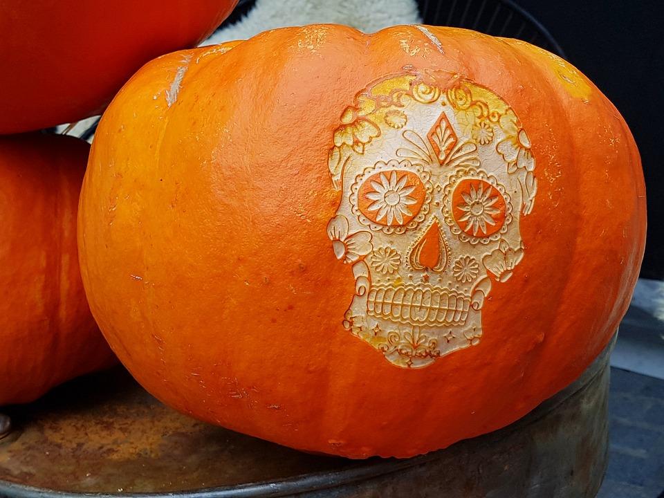 Pumpkin, Halloween, Skull, Autumn, Gourd, Deco