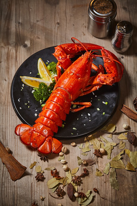 Seafood, Lobster, Boston Lobster, Gourmet, Dishes