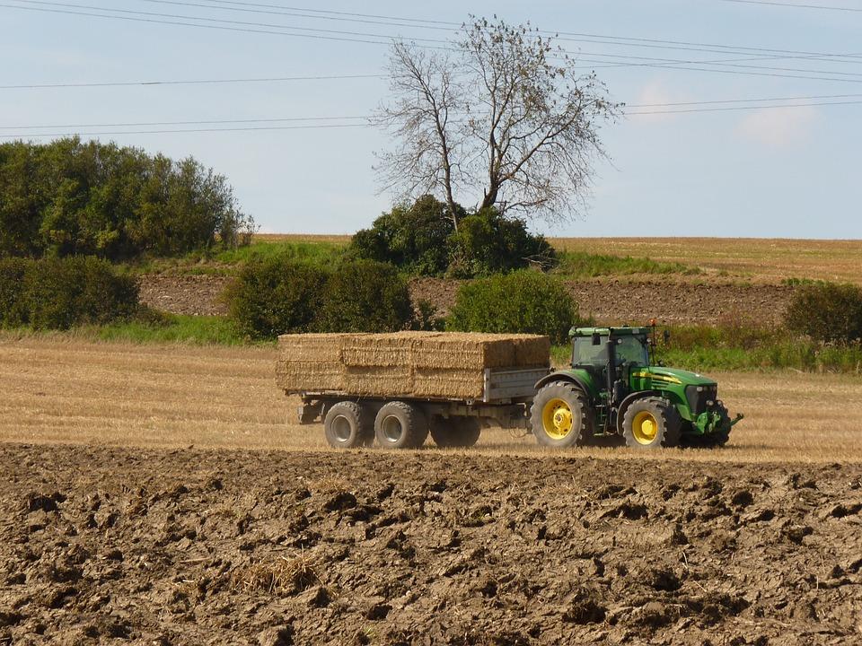 Tractor, Field, Harvest, Arable, Plow, Grain, Cereals