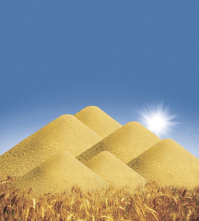 Grain, Mountain, Harvest