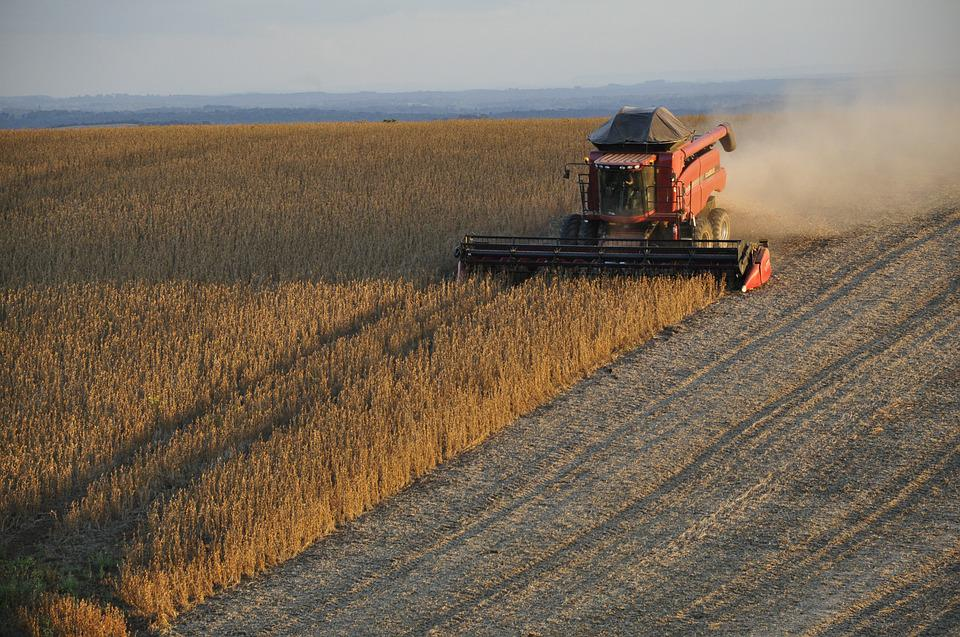 Soybeans, Harvester, Harvest, Grains, Brazil