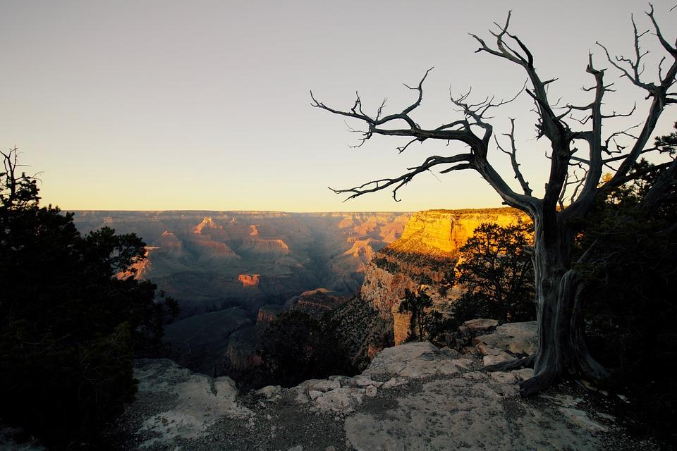 Grand, Canyon, Grand Canyon, Az, Arizona, National