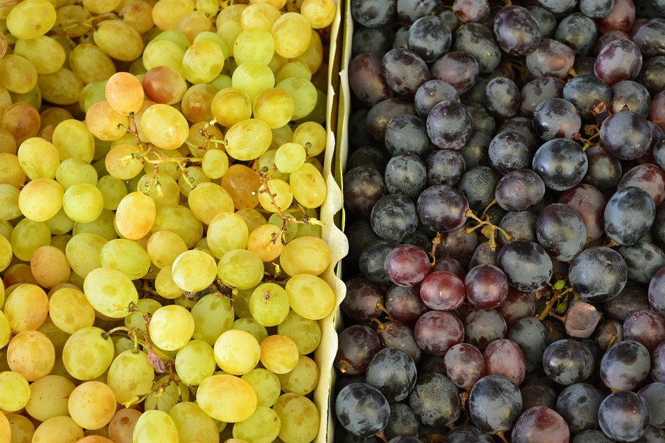 Grapes, Grape Color, Fruit, Red, White, Organic