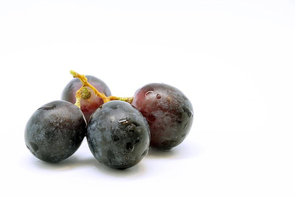 Grape, Fruit, Table Grapes, Fruits, Blue, Healthy, Food