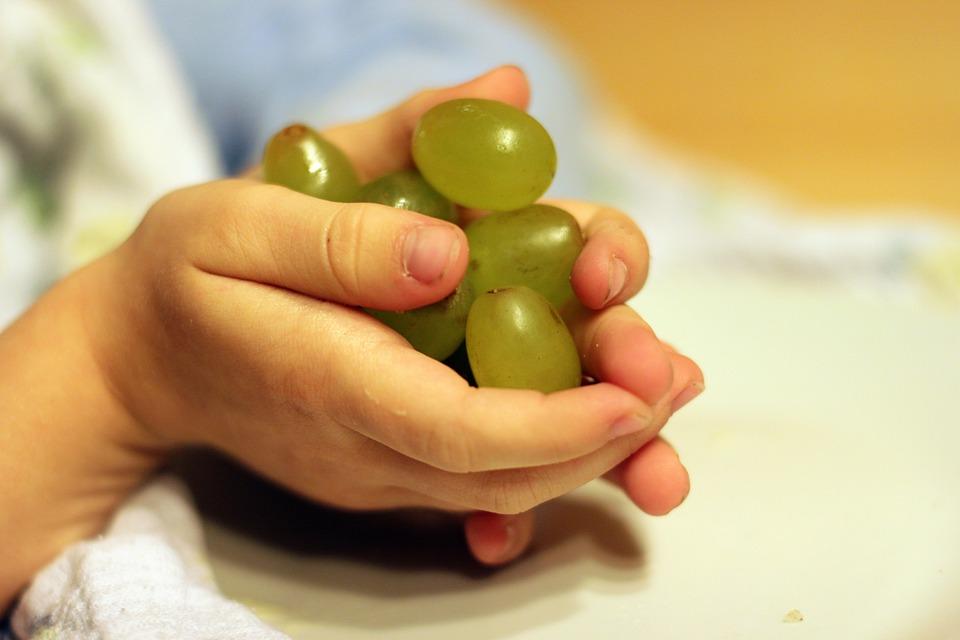 Grapes, Fruit, Hands, Children's Hands, Keep