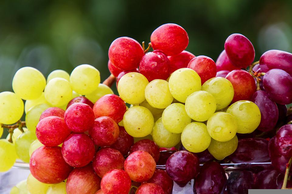 Grapes, Fruits, Bunch, Cluster, Bunch Of Grapes