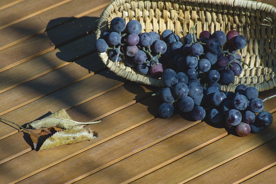 Grapes, Dark, Fresh, Shopping Cart, Fruit, Dining Table