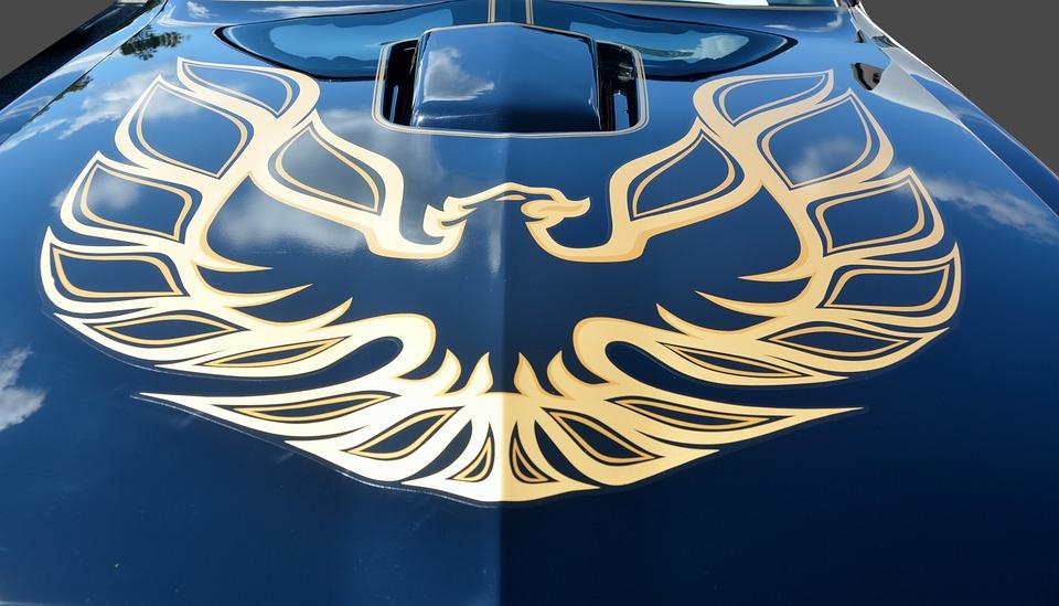 Pin Stripe, Artistic, Car, Hood, Design, Graphic Art