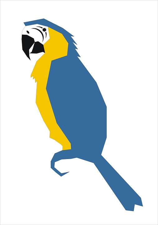 Parrot, Graphic, Bird
